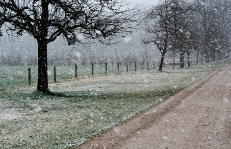 une photo de l'extérieur en hiver
